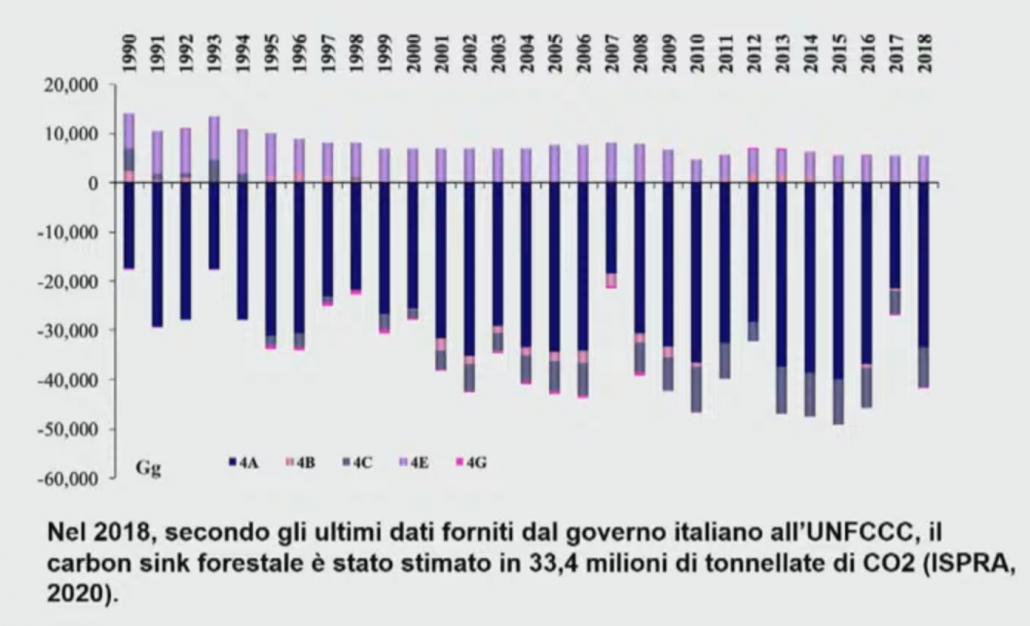 Valore del carbon sink assicurato dalle foreste italiane. FONTE: ISPRA 2020 su dati 2018.