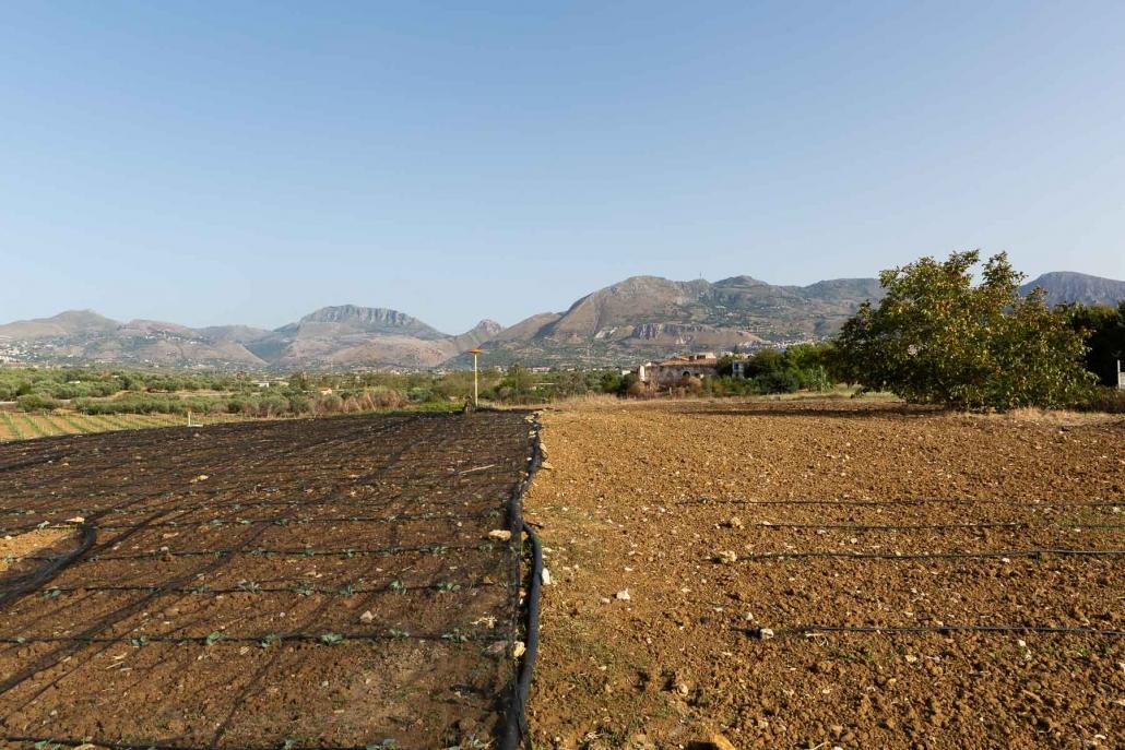 L'area dove sorgerà la food forest di Partinico (PA) inserita tra le 100 Comunità del Cambiamento Slow Food