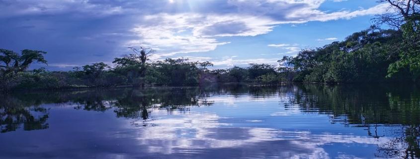 L'allarme Amazzonia risuona anche in Europa dove il Parlamento chiede alla Commissione di imporre nuove regole alle imprese. Foto: Pixabay License Libera per usi commerciali Attribuzione non richiesta