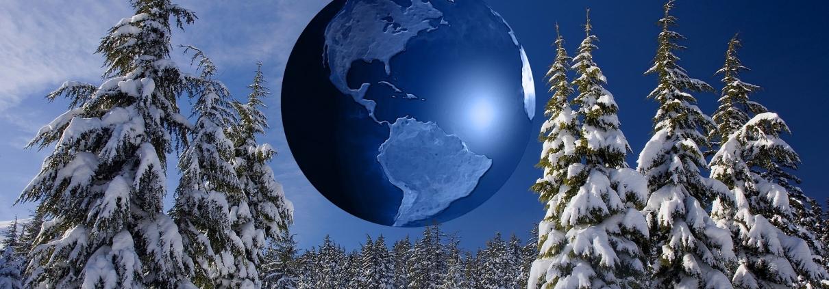 Gli alberi di Natale più amici della terra e a minore impatto ambientale? Sono veri, di provenienza locale e cresciuti in foreste gestite in modo responsabile, meglio se in possesso di una delle certificazioni forestali. Foto di Gerd Altmann da Pixabay