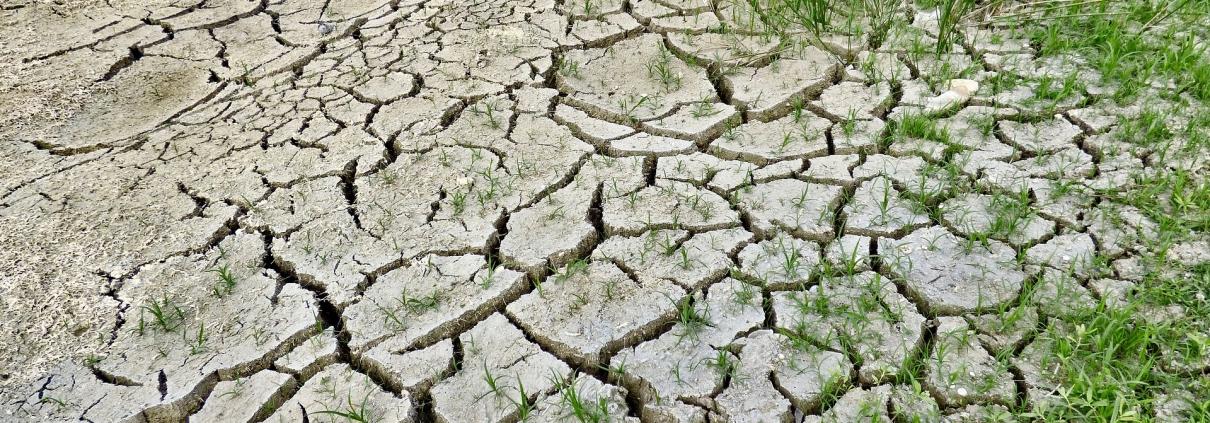 siccità desertificazione cambiamenti climatici