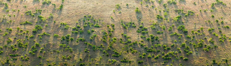 Una vista aerea di una porzione della Grande Muraglia Verde (The Great Green Wall of the Sahara and the Sahel Initiative).