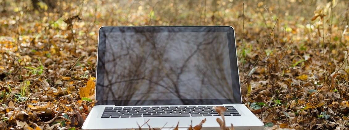 Alla base del progetto Landsupport c'è la convinzione che un approccio integrato basato sulla rete sia necessario per affrontare problemi complessi. Foto: Pexels.com, Free to use. No attribution required