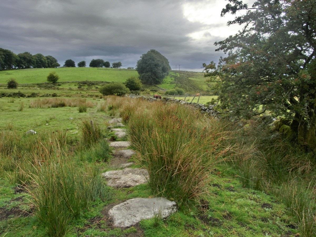 Il Parco nazionale di Dartmoor, nell'Inghilterra sud-occidentale, è lo scenario dello studio condotto dall'Università di Plymouth sui benefici della riforestazione. Foto: pxhere CC0 Public Domain Free for personal and commercial use No attribution required