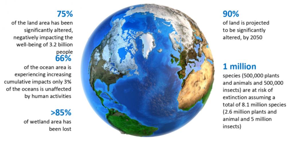 L'impatto delle attività umane sugli ecosistemi terrestri. FONTE: Robert Watson, Peccei Lecture Roma 12.11.2019