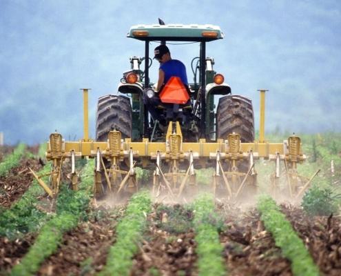 La Soil Science Society of America chiede al governo di aiutare gli agricoltori USA ad operare nel mercato del carbonio. Foto: Meridith Nalls CC0 Public Domain Free for commercial use. No attribution required.