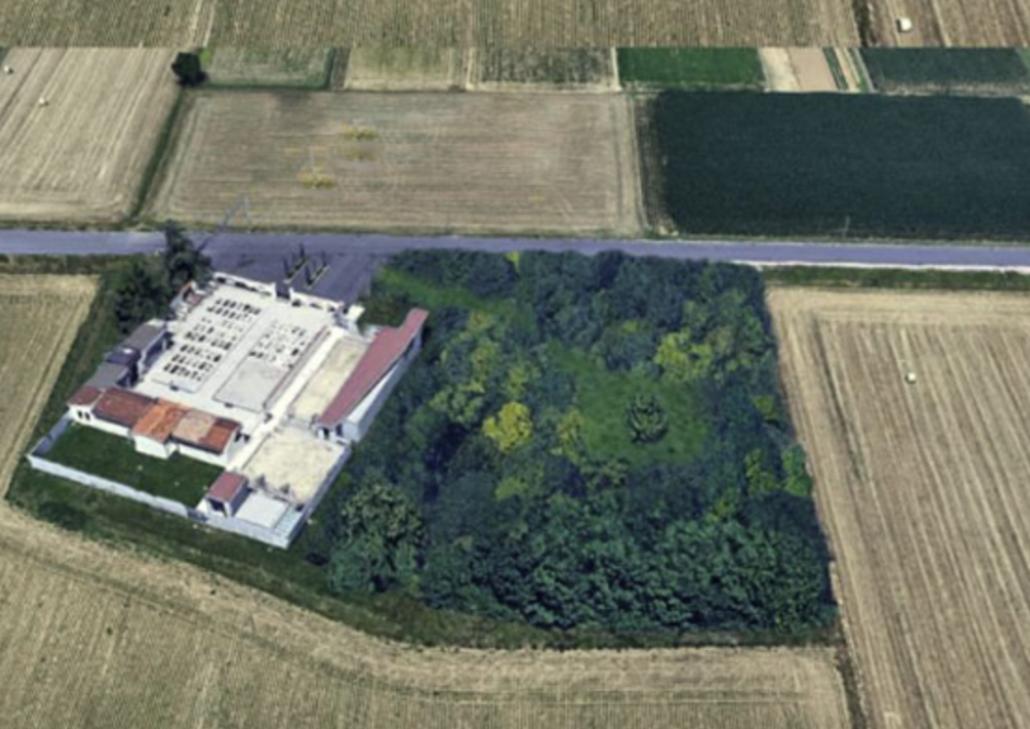 """L'area di Roncajette interessata dalla creazione del """"Bosco vivo"""" realizzato dall'associazione Spiritus Mundi. Risultato post operam."""