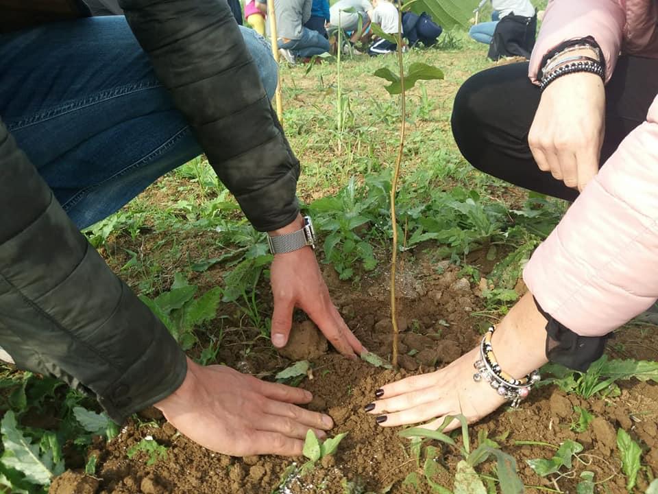 L'inizio della piantumazione delle piante del bosco di Roncajette - frazione del Comune di Ponte San Nicolò, PD.