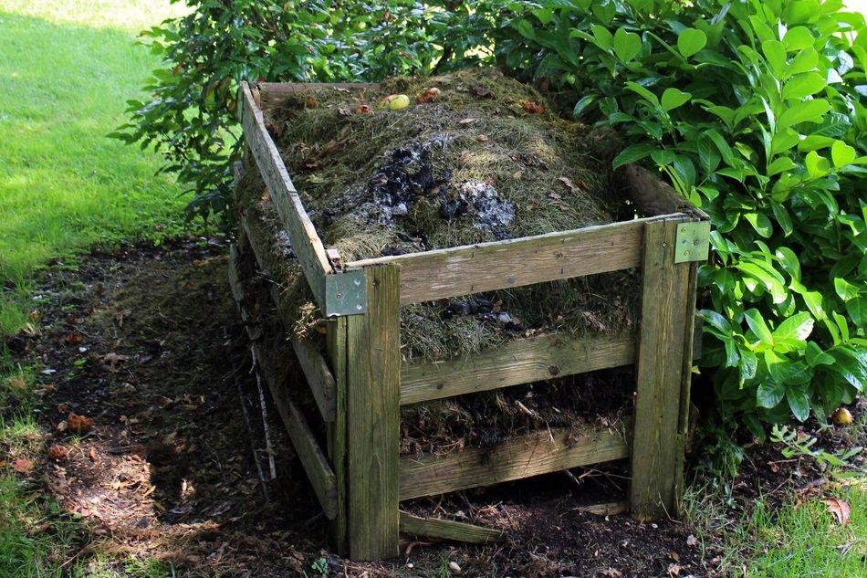 Il recupero dei rifiuti organici e la loro restituzione al suolo è una strategia essenziale per la bioeconomia circolare. Foto: Pixi.org CC0 Public Domain. Free for commercial use. No attribution required