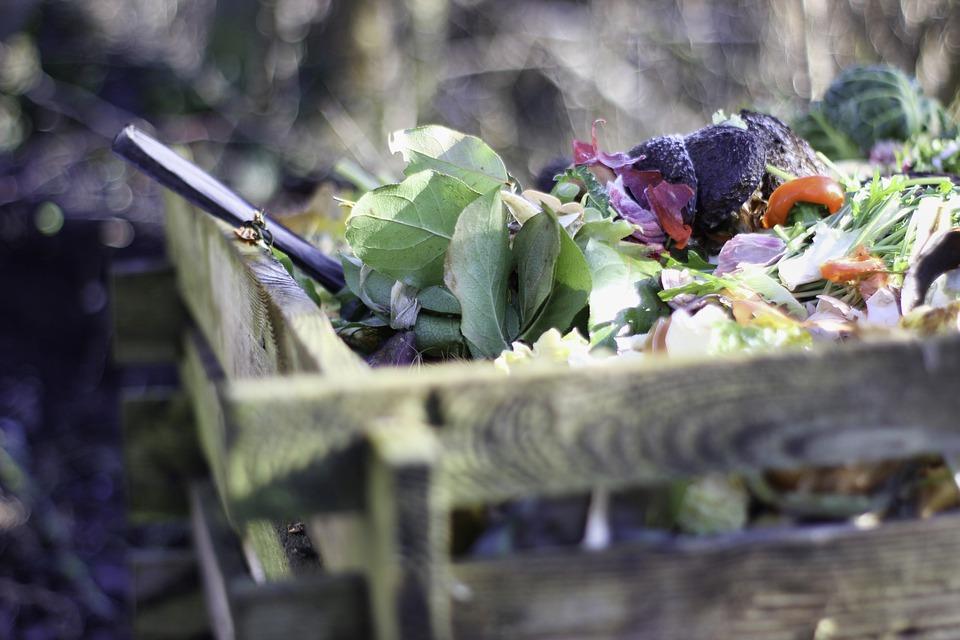 Il compostaggio riduce la pressione sulle discariche e favorisce la salute del suolo agricolo. Foto: Pixabay License Libera per usi commerciali Attribuzione non richiesta