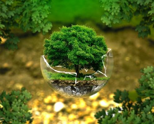 bioeconomia circolare, suolo, ambiente, natura