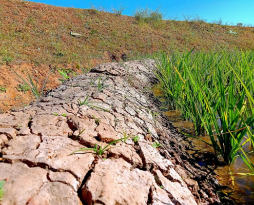 SUOLO, desertificazione, erosione, agricoltura, siccità