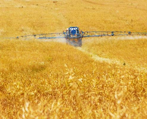agricoltura, fertilizzanti, pesticidi, suolo, api,