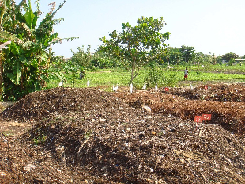 Products such as compost can increase fertility and carbon sequestration. But retention and emission levels depend on many factors. Photo: Falk Negrazius Attribution 2.0 Generic (CC BY 2.0)