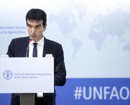 Maurizio Martina FAO Agricoltura