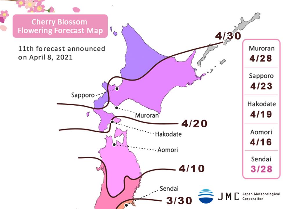 """La """"mappa di previsione della fioritura dei ciliegi"""" mostra la data in cui i fiori sbocciano, ma non la piena fioritura (considerata come il momento in cui l'80% dei fiori è sbocciato). FONTE: Japan Meteorological Corporation."""