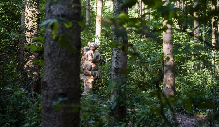 Una foresta viene gestita in modo sostenibile quando: la quantità di legname tagliato non è mai superiore alla quantità che cresce in foresta. Dopo il taglio, gli alberi verranno aiutati a rinnovare naturalmente o ripiantati.