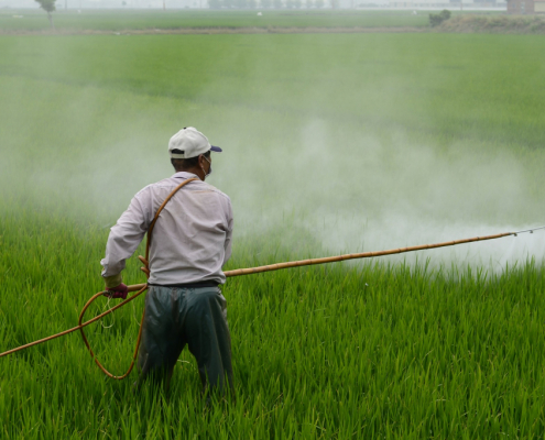 glyphosate herbicide ogm insecticide
