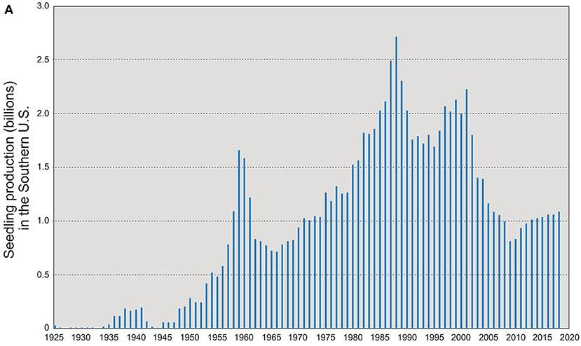 """La produzione di piantine nel sud degli Stati Uniti dal 1925 a oggi (miliardi di unità). Immagine: Fargione J. et al. """"Challenges to the Reforestation Pipeline in the United States"""", Front. For. Glob. Change 4:629198. doi: 10.3389/ffgc.2021.629198 Copyright © 2021 Fargione J. et al. open-access article Attribution 4.0 International (CC BY 4.0)"""