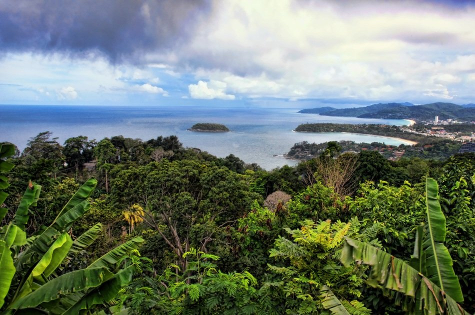 In tropical forests, soil microbes play a key role in the carbon cycle. Photo: Melany Klapper CC0 Public Domain Free for commercial use. No attribution required.