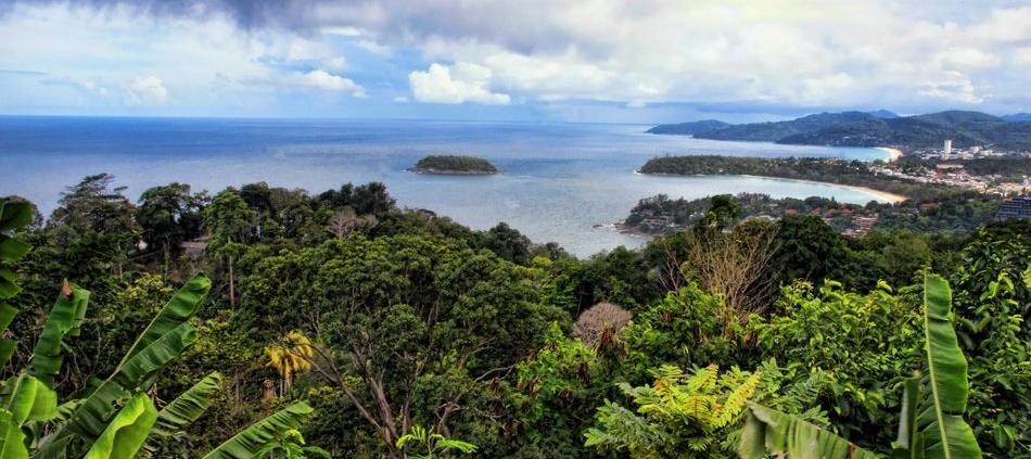 Nelle foreste tropicali i microbi del suolo giocano un ruolo chiave nel ciclo del carbonio. Foto: Melany Klapper CC0 Public Domain Free for commercial use. No attribution required.