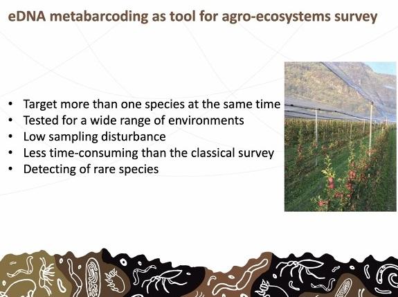 L'applicazione dell'eDNA offre molti vantaggi rispetto alle tecniche tradizionali. Immagine: dalla presentazione di Luigimaria Borruso, Free University of Bozen/Bolzano, FAO Global Symposium on Soil Biodiversity, aprile 2021