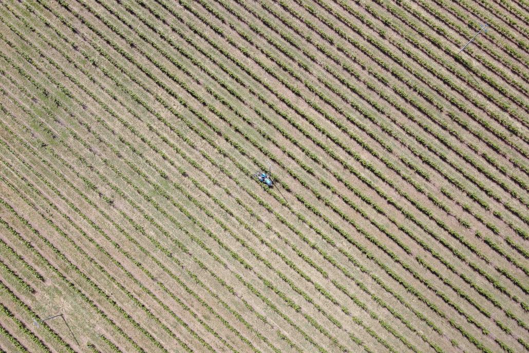 agricoltura desertificazione fertilizzanti eberle desertificazione suolo