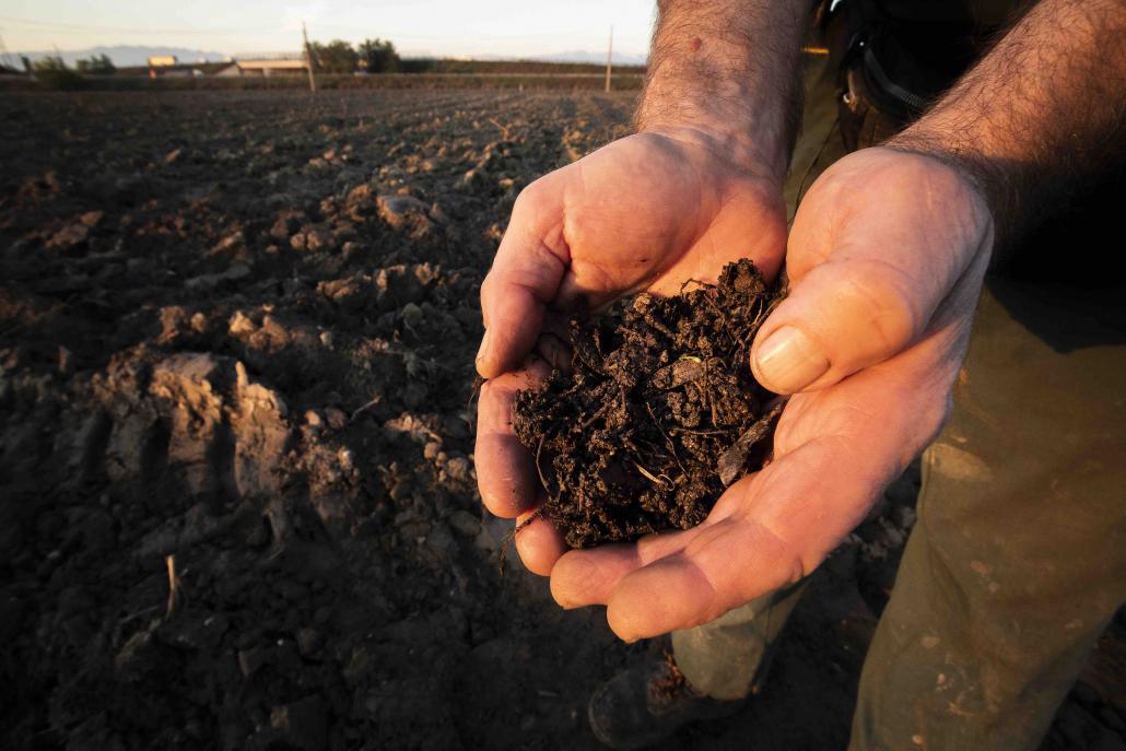 terra suolo mani agricoltura colture eberle