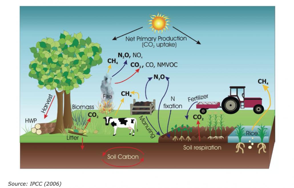 Le principali fonti / rimozioni e processi di emissione di gas serra nei terreni agricoli. FONTE: IPCC, 2006.
