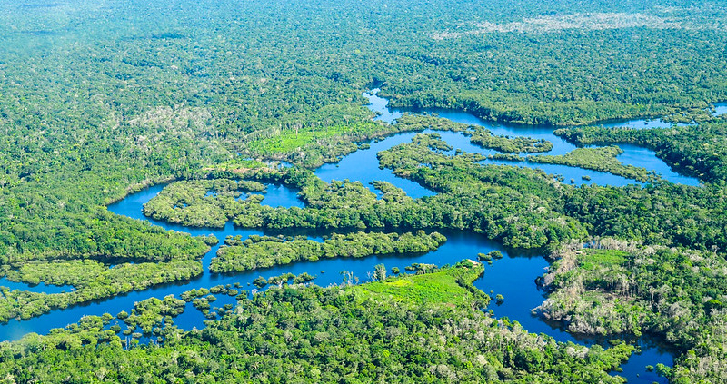 The carbon great escape: Brazilian Amazon experienced a net loss of 670 million tons between 2010 and 2019. Photo: Neil Palmer/CIAT Attribution-NonCommercial-NoDerivs 2.0 Generic (CC BY-NC-ND 2.0)