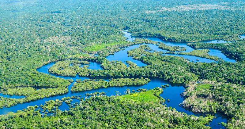 Carbonio in fuga: tra il 2010 e il 2019 l'Amazzonia ha registrato una perdita netta pari a 670 milioni di tonnellate. Foto: Neil Palmer/CIAT Attribution-NonCommercial-NoDerivs 2.0 Generic (CC BY-NC-ND 2.0)