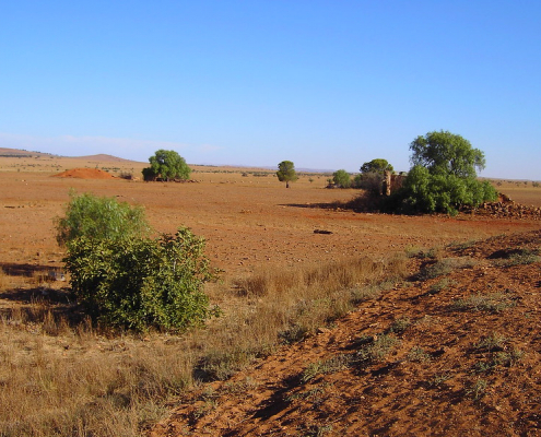 The circular strategy of recovering organic waste can help increase the fertility of Australian soils, which are among the driest in the world. Photo: denisbin Attribution-NoDerivs 2.0 Generic (CC BY-ND 2.0)