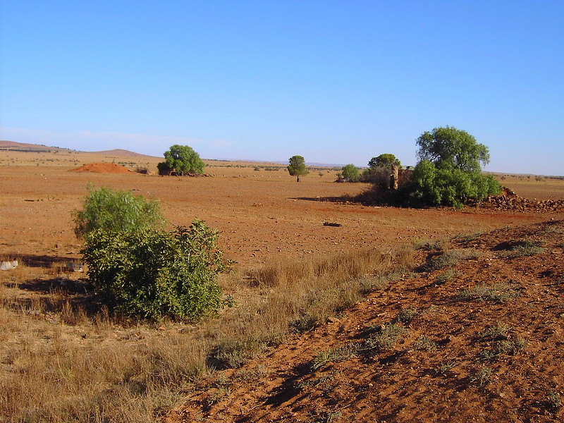 La strategia circolare di recupero dei rifiuti organici può favorire un aumento della fertilità dei terreni australiani considerati tra più aridi al mondo. Foto: denisbin Attribution-NoDerivs 2.0 Generic (CC BY-ND 2.0)