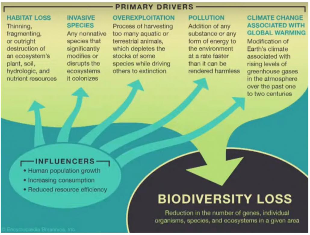 biodiversità suolo ambiente clima