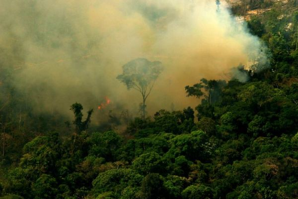 In the first five months of 2021, deforestation lead to a 2,548 square kilometers loss for Brazilian Amazon. Photo: Lou Gold Attribution-NonCommercial-ShareAlike 2.0 Generic (CC BY-NC-SA 2.0)