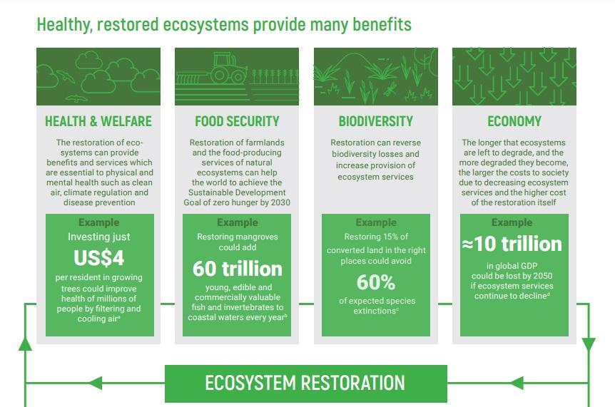 I benefici del ripristino sono molteplici. Immagine: © 2021 United Nations Environment Programme 2021