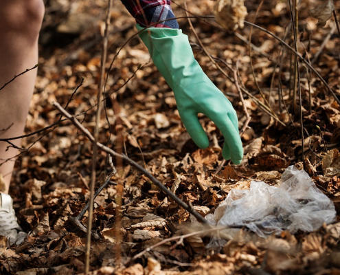 Few data and one truth according to FAO: soil pollution is one of the most dangerous global threats. Photo: Pixabay License Free for commercial use No attribution required
