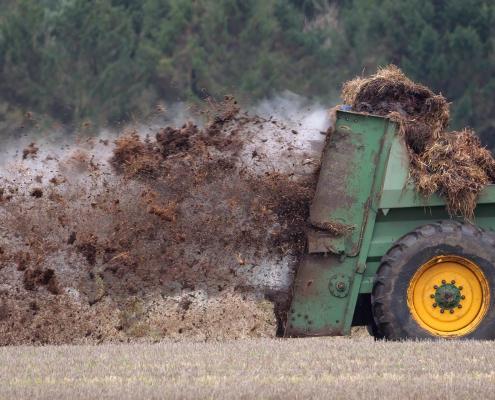 fertilizzanti organici, suolo, sostanza organica, agricoltura