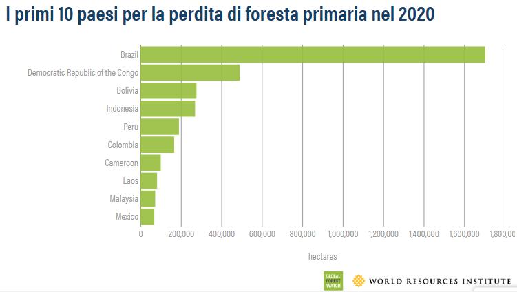 Perdita foreste primarie: la top ten 2020. FONTE: World Resources Institute, 2021.