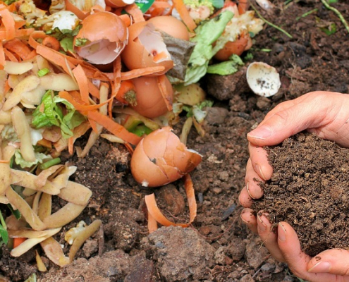 Food waste use is essential for compost production. Photo: Max Pixel CC0 Public Domain Free for commercial use Link referral required https://www.maxpixel.net/Ecology-Waste-Fertilizer-Compost-Garden-Nature-6053136