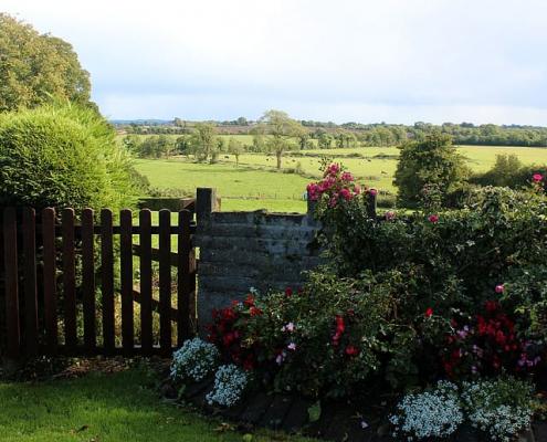 Una app sviluppata in Irlanda consente una diagnosi del suolo sotto vari punti di vista. Foto: Pxfuel Free for commercial use, DMCA