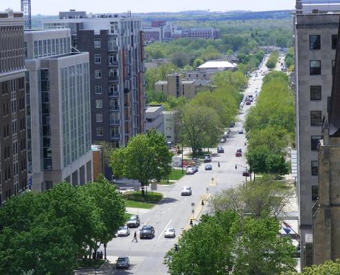 A Madison, Winsconsin, le aree con più alberi registrano un calo medio di temperatura pari a 3,5 °C nel confronto con le altre zone della città. Foto: Pixabay License. Libera per usi commerciali Attribuzione non richiesta