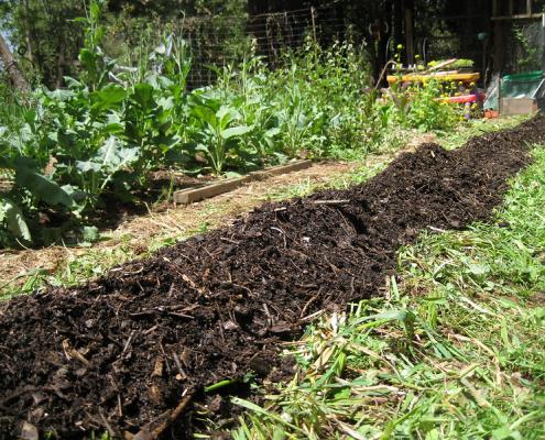 biochar agricoltura compost fertilizzante