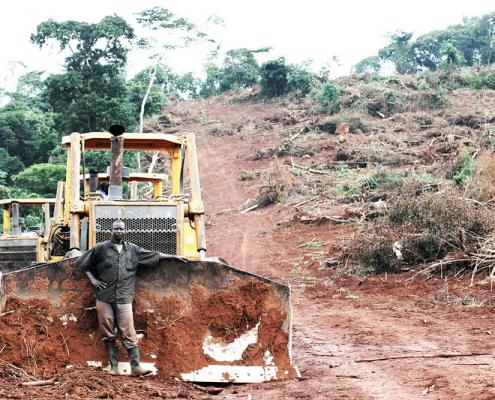 L'Africa è il continente in cui l'accaparrameno di terra a fini speculativi cresce di più. E crea maggiori danni a territori e popolazioni locali. FOTO: Friends of the Earth international.