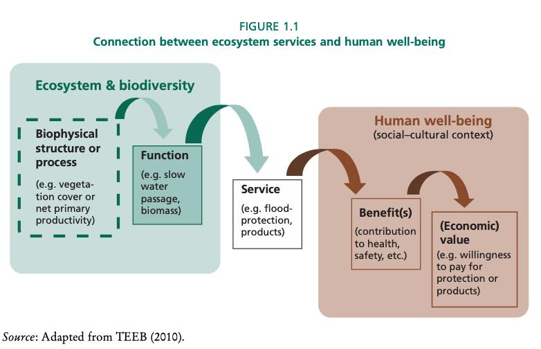 La relazione tra servizi ecosistemici e benessere umano. FONTE: A Guide to Forest-Water Management, FAO 2021.