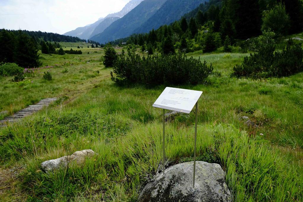 biotopo torbiere Passo Tonale Val di Sole