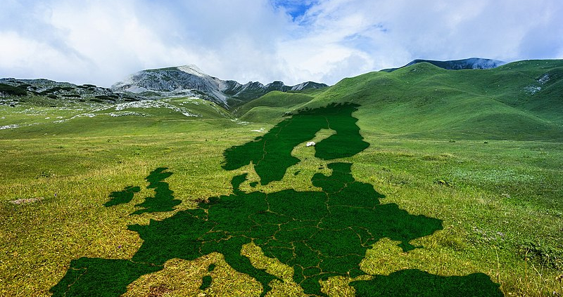 """Applications for the EU call on """"Food, Bioeconomy, Natural Resources, Agriculture and Environment"""" are open until October 6. Photo: Gerd Altmann Creative Commons CC0 Public domain"""