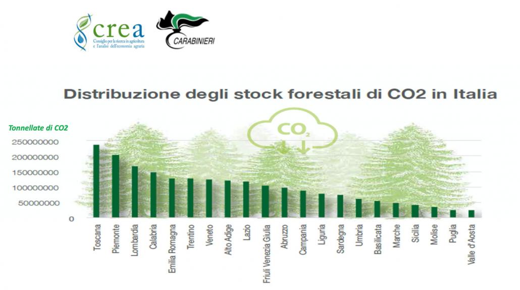 Distribuzione degli stock forestali di CO2 in Italia. FONTE: INFC 2015.
