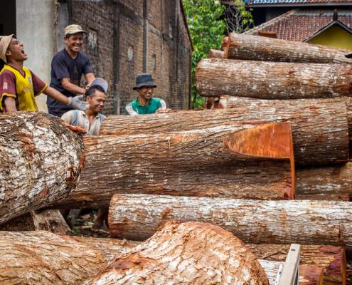 In Indonesia, le emissioni derivanti dal cambiamento dell'uso del suolo e dal settore forestale hanno contribuito a quasi la metà delle emissioni del Paese negli ultimi 20 anni. Foto: Deanna Ramsay/CIFOR Attribution-NonCommercial-NoDerivs 2.0 Generic (CC BY-NC-ND 2.0)